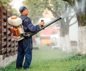Подборно пръскане срещу гъсеници в Стралджа