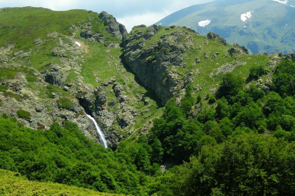 """Туристически групи ще посетят с водач вековните букови гори в Националния парк """"Централен Балкан"""". Инициативата ще даде възможност на по-широк кръг хора..."""