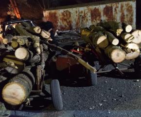 Полиция и СПООР конфискуваха две каруци с краден дървен материал, извършителите се издирват