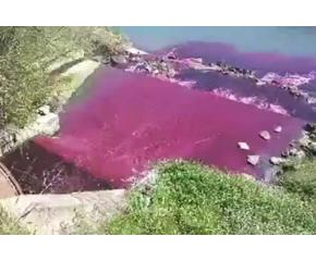 """Поредна глоба за """"ВиК"""", заради оцветяване на река Тунджа"""
