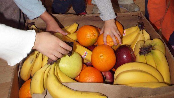 """Днес изтича срокът, в който доставчиците по схемите """"Училищен плод"""" и """"Училищно мляко"""" могат да кандидатстват за участие в тях през следващата учебна година,..."""