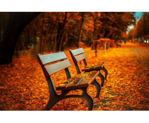 Посрещаме есента