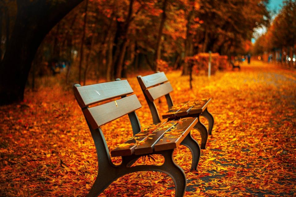 В 16.31 ч. на 22 септември 2020 г. започва астрономическата есен През годината Слънцето последователно осветява Северното и Южното полукълбо, като по...
