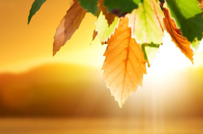 Днес посрещаме есенното равноденствие. У нас то ще настъпи в 10 часа и 50 минути.  Денят трябва да се изравни с нощта, но не всяко място ще изпитва точно...