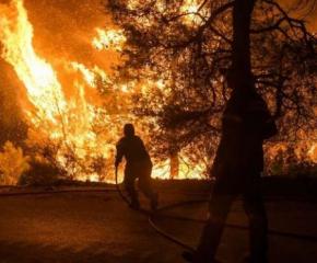 Пожар е вилнял в село Млекарево