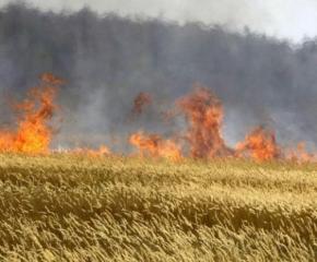 Пожар изпепели 40 декара пшеница в Гранитово