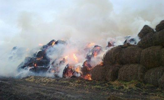 В боляровско вчера възникна сериозен пожар. В 16:44 часа на 3 юни в оперативния център при Регионалната дирекция за пожарна безопасност и защита на населението...