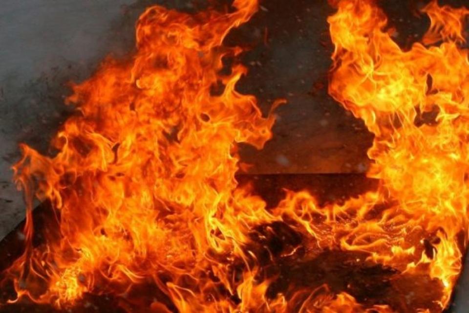 Голям пожар пламна днес в местността Сухи дял над Котел. Огънят е обхванал голяма площ. Пожарът...