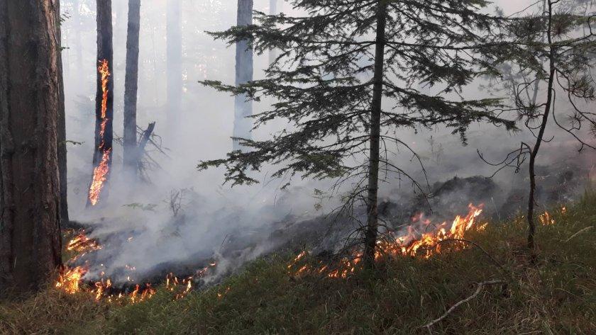 Екипи на РСПБЗН-Нова Загора са спасили 150 декара гори при пожари в землищата на селата Омарчево и Крива круша. Произшествията са станали в следобедните...