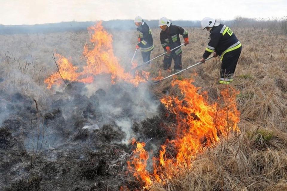 Пожарникари на РСПБЗН-Нова Загора са спасили 60 пчелни кошери при пожар във фургон, в землището на село Пет могили. Сигналът е получен на 6 октомври в...