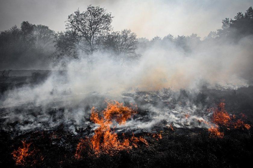 Овладян е пожарът край хасковското село Брягово, който за денонощие обхвана 3 хиляди декара, съобщава БНР. Огънят бушува югоизточно от селото от вчера...