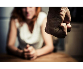 През 2020 година 19 жени са загубили живота си заради домашно насилие