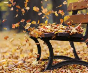 През ноември: динамично време, студът настъпва трайно в края на месеца