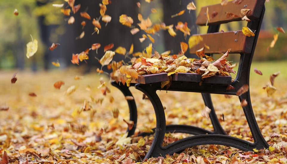 Ноември започна с по-студено време, макрар че в края на седмицата се очаква на някои места в страната градусите отново да надминат 20. Това съобщи пред...