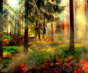 Продължава овладяването на пожара край Лесово