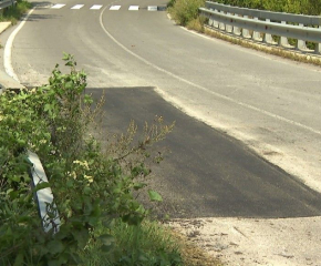 Продължава почистването от храсти и изсъхнали клони по пътищата в община Сливен