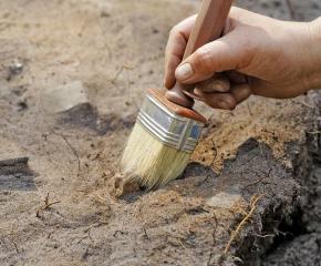 Продължават разкопките в землището на село Завой