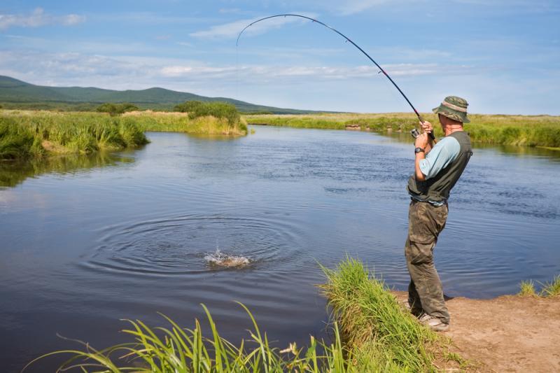 Във връзка с публикации в електронните и печатните медии относно рестрикции и ограничителни мерки върху лова и риболова, в условията на обявеното в страната...