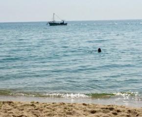 """Проверка за замърсяване с мазот на плаж """"Иракли"""""""