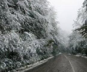 Пътищата в община Сливен са проходими