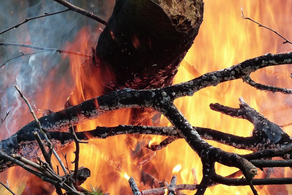 """60 души – пожарникари, служители на хасковското общинско предприятие """"Екопрогрес"""" и """"Общинското лесничейство"""" цяла нощ се бориха с пожара, пламнал снощи..."""