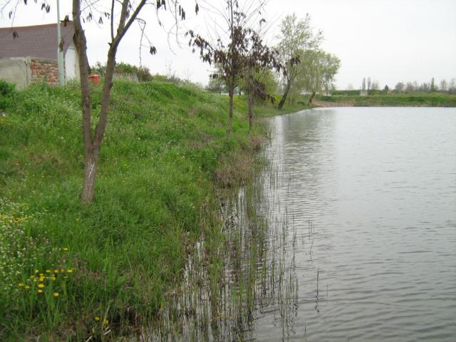 В първия ден от забраната на риболова, нито един рибар не излезе на бреговете на река Тунджа край Ямбол. В заповед на земеделския министър са посочени...