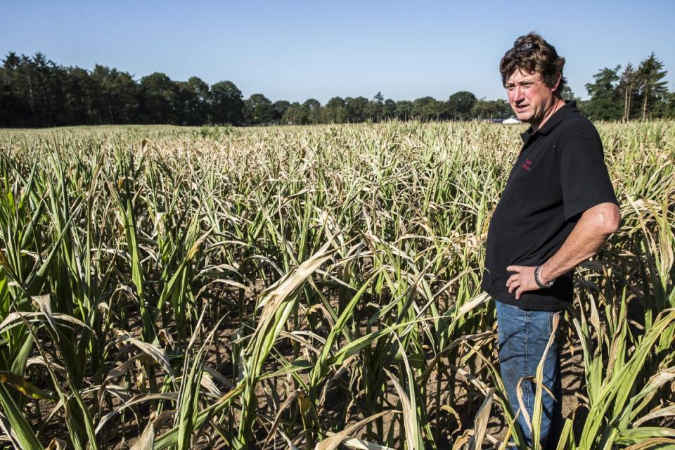 Министерството на земеделието стартира информационната кампания за директни плащания 2020. Срещите със земеделските стопани ще се проведат във всички...