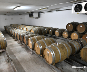 Реализацията и пазарът са много важни за гроздопроизводителите в община Сливен