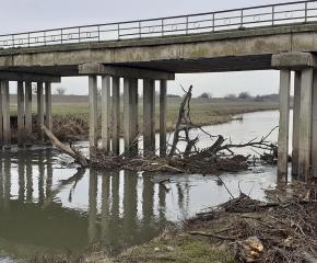 Река Тунджа при Тенево беше почистена