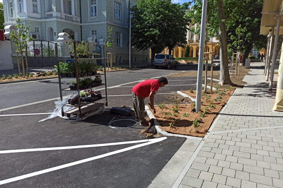 """Броени дни остават до приключване на ремонта на булевард """"Хаджи Димитър"""" в Сливен. В момента се извършват довършителни дейности, сред които озеленяване,..."""