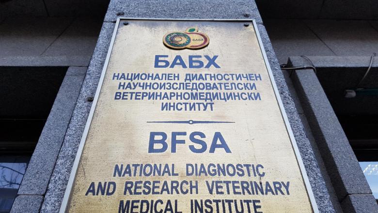Синдикатите се разделиха за протеста на служителите на Българската агенция по безопасност на храните. Той е обявен за утре пред сградата на Народното събрание....