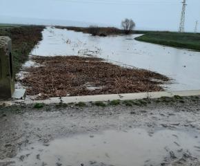 Скъсани речни диги наводниха ниви и мазета в стралджанско