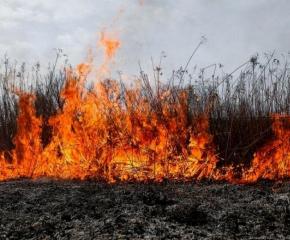 Сметище и сухи треви изгоряха в село Калчево
