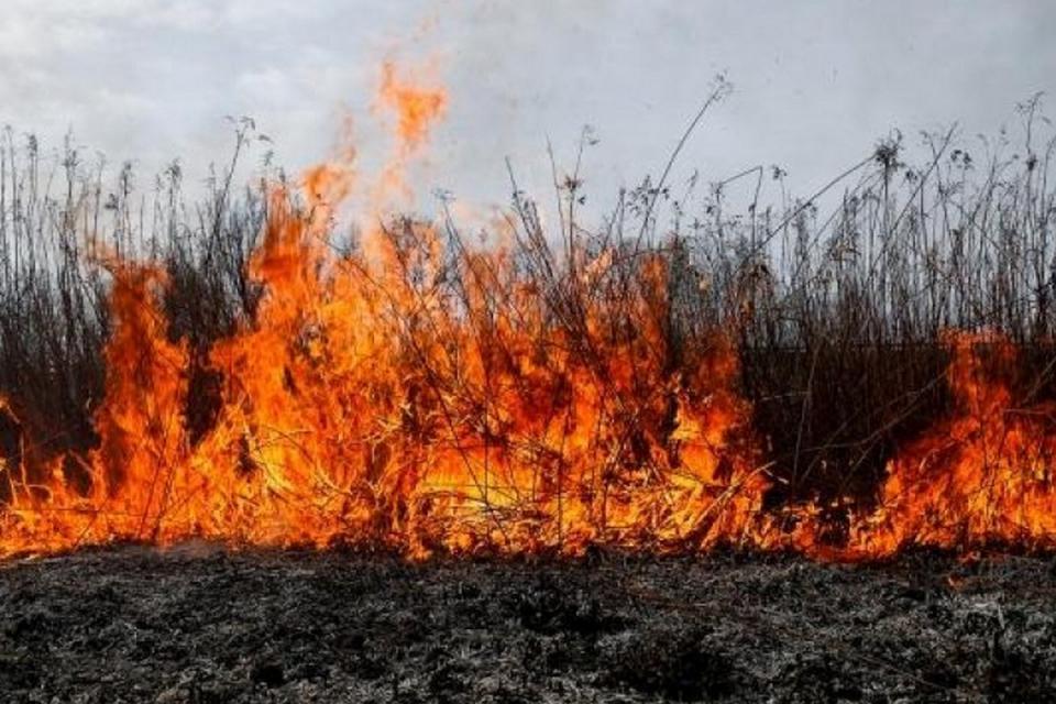 """През изминалото денонощие дежурните екипи на РД""""ПБЗН"""" са се отзовали на 6 сигнала за пожари в областта. В четири от случаите са сухи тревии отпадъци –..."""