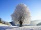 Спокойна е зимната обстановка в Сливен