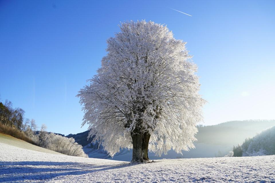 Спокойна е зимната обстановка в Сливен. Снежната покривка в планинската част е около 7 сантиметра, но бързо се топи. Всички пътища са проходими. От Община...