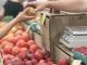 Срокът за подаване на заявки за втория фермерски пазар в Сливен е до 26 юли