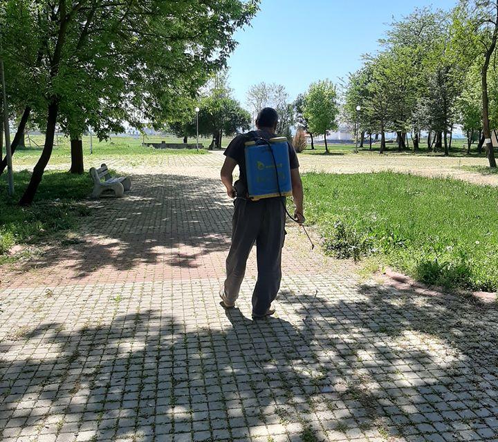 В Стралджа извършват пръскане срещу кърлежи и бълхи. Третират се всички зелени площи в центъра на града, покрития канал, междублоковите пространства, парковете...