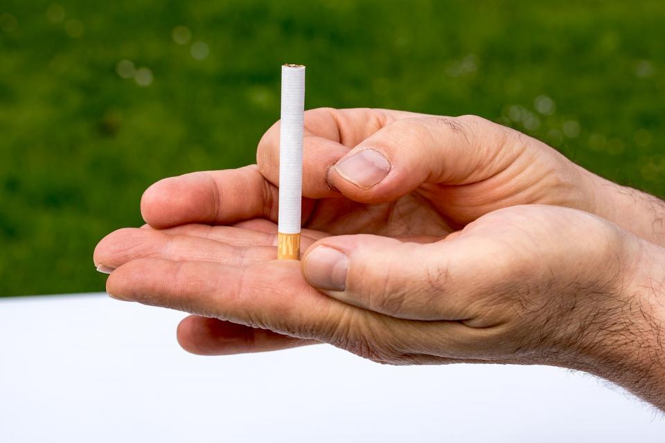 Всяка година по инициатива на Световната здравна организация на 31 май се отбелязва Световния ден без тютюн. Целта на събитието е да се подчертаят рисковете...