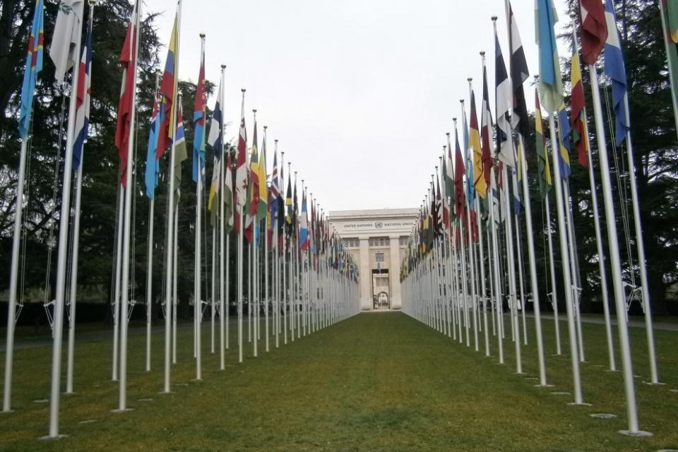 На 24 октомври отбелязваме Международния ден на Обединените нации. През 1947 година Общото събрание на Организацията на Обединените нации обявява 24 октомври,...