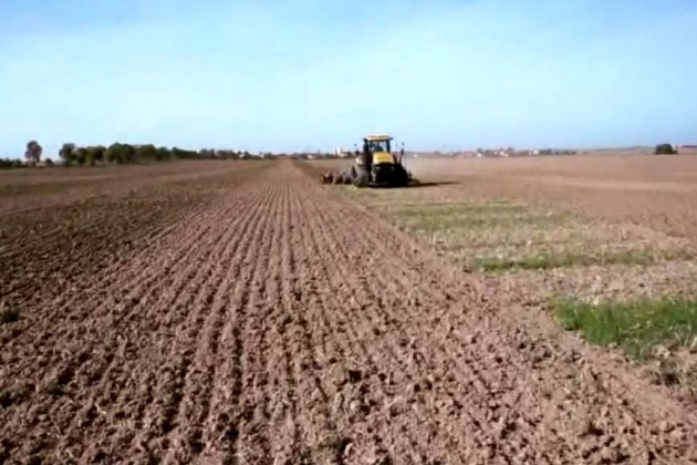 В резултат на падналите дъждове и топлото време на много места есенните култури, които стопаните от Ямболска област са засели в края на септември и началото...