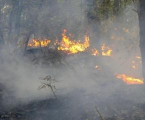 Трети ден се борят с пожар край Котел