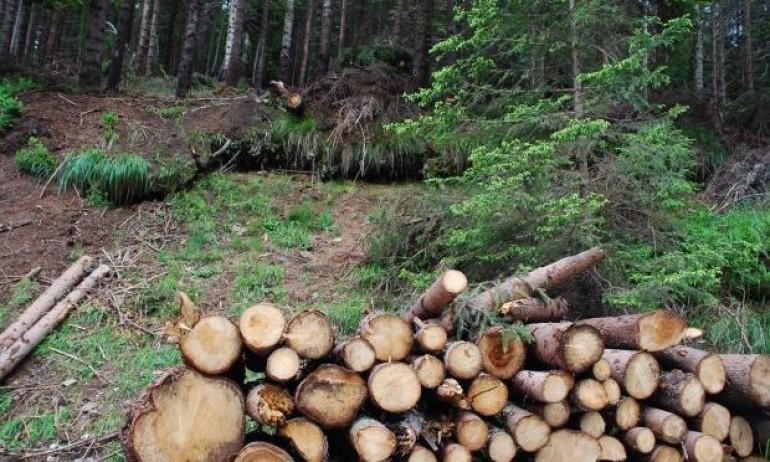 Съвместна операция на РУ-Котел и РДГ-Сливен е проведена на 26 май по установяване на незаконна сеч, превоз и съхранение на дървесина без необходимите за...