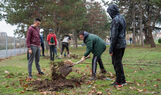 """Ученици и доброволци залесиха """"Боровец"""" заедно с кмета на Ямбол (видео)"""