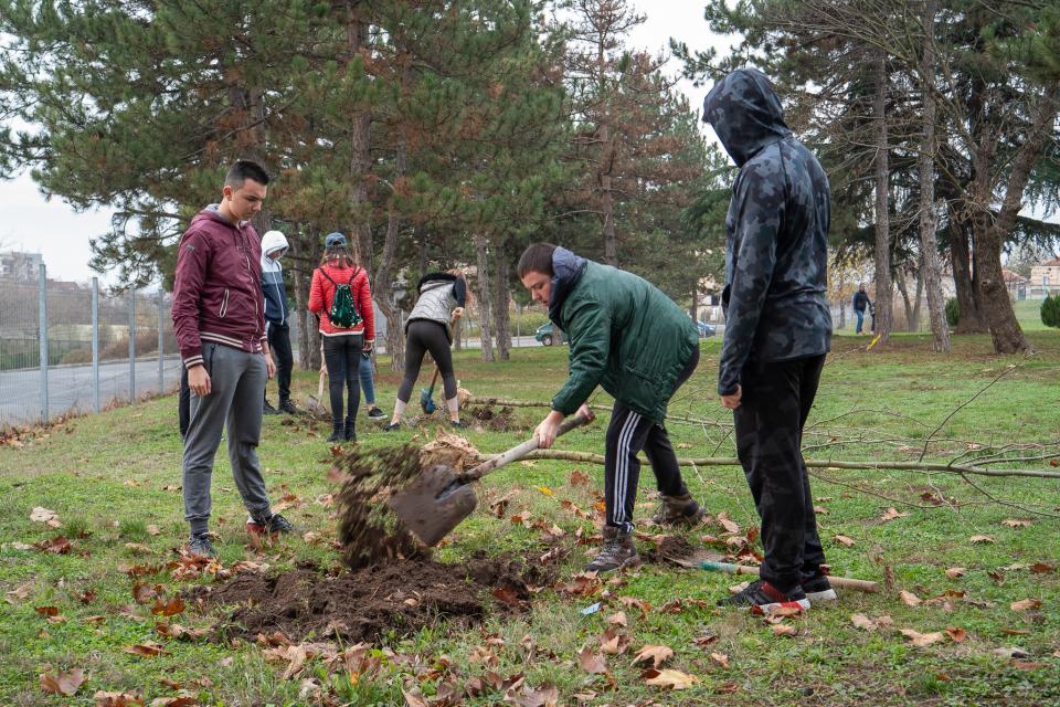 """Ученици от ямболската природо-математическа гимназия """"Атанас Радев"""" инициираха залесяване на лесопарк """"Боровец"""". Те са в осми клас и вече осъзнават важността..."""