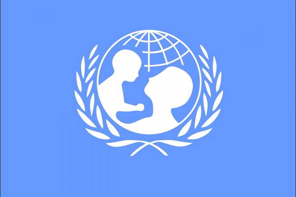 УНИЦЕФ, в партньорство с просветното министерство, ще проведе днес онлайн срещи във връзка с проблемите в образованието в условията на пандемия, научи...