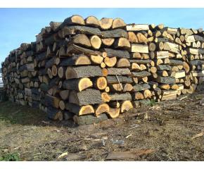 Важно от РДГ - Сливен за превоза на дървесина и дърва за огрев