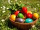 На Велика Събота, очакваме Възкресение Христово