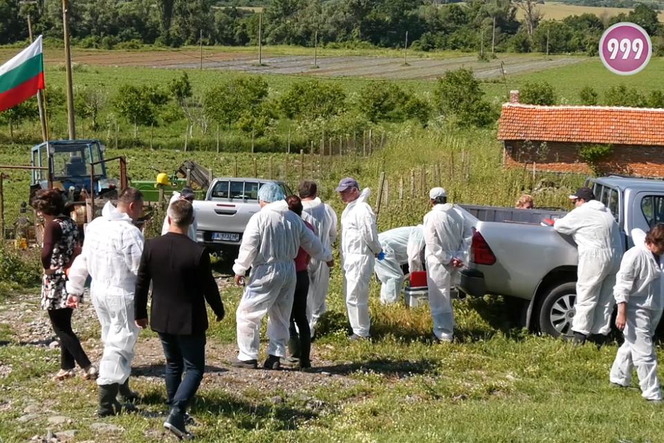 Ветеринари влязоха във фермата на Ана Петрова от Болярово. Лекари от няколко области, водени от служебния зам. - министър на земеделието д-р Крум Неделков...
