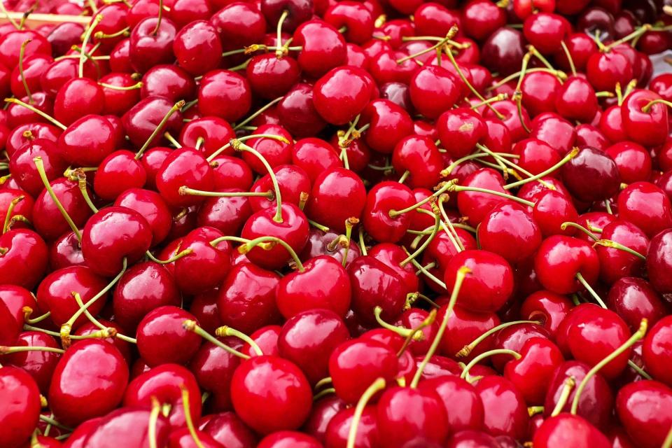 Вносът на череши от Турция обрича на провал реколтата в Кюстендилско, твърдят местни земеделски производители. По думите им именно заради вноса в региона...
